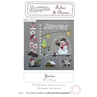 Janvier - semi-kit fiches & charms